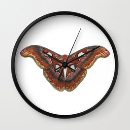 Atlas Moth Wall Clock