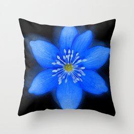 Blue Powder Throw Pillow