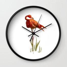 The Florida Flamingo Wall Clock