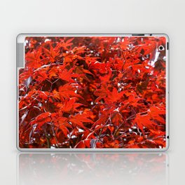 Japanese Red Maple Leaves Laptop & iPad Skin