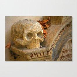 Skull | Totenkopf Canvas Print