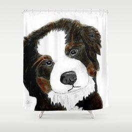 Bernese Mountain Dog Love Shower Curtain