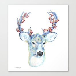 Christmas Deer - Forest animals series Canvas Print