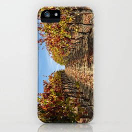 Fall Grape Vineyard iPhone Case