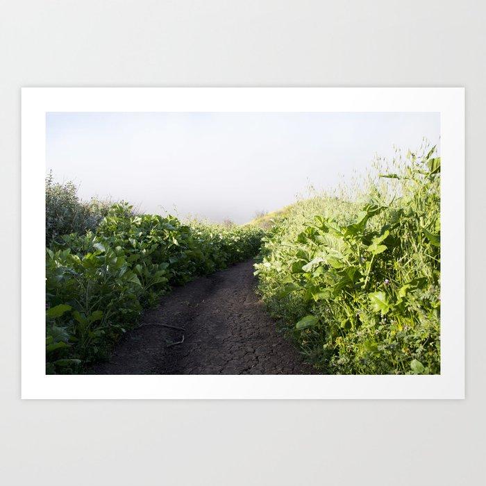 Follow The Trail Art Print