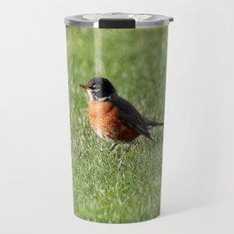 American Robin hopping in the Grass Travel Mug