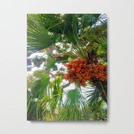 Le Jardin Metal Print
