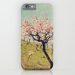 Almond Blossom Hill iPhone Case
