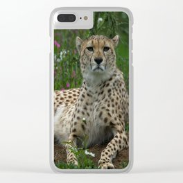 Cheetah Amidst Spring Flowers Clear iPhone Case