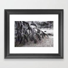 Zoo Framed Art Print