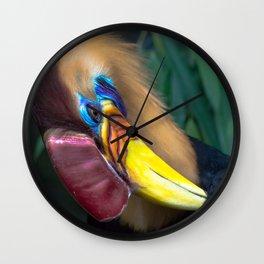Wildlife Collection: Colourful Bird Wall Clock