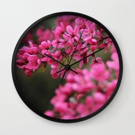 Crap Apple Blossoms Wall Clock