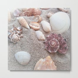 Sandy Summer Seashells Metal Print