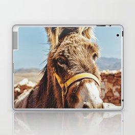 Donkey photo Laptop & iPad Skin