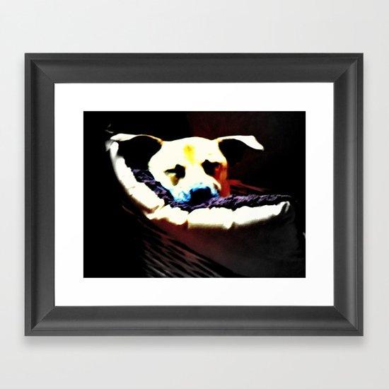 sleeping puppy stuck in basket Framed Art Print