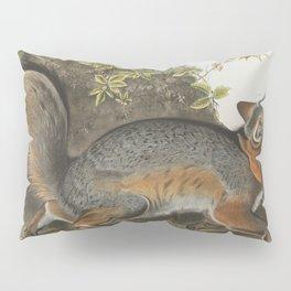 Vintage Illustration of a Grey Fox (1843) Pillow Sham