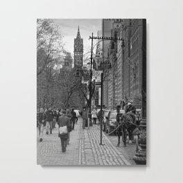 Central Park South Walking East Metal Print
