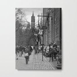 Central Park South Walking East Metal Print