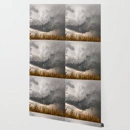Marshmallow - Storm Cloud Over Golden Wheat in Kansas Wallpaper