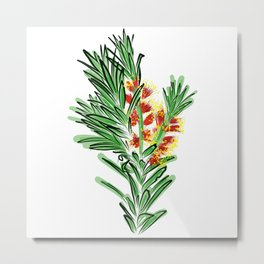 Beautiful Australian Native Bottlebrush Flower Metal Print