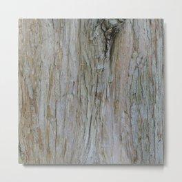 TEXTURES -- Dawn Redwood Bark Metal Print