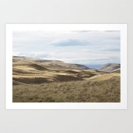 South Landscape Art Print