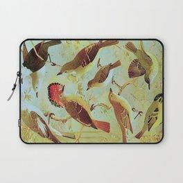Amazonian Birds by Göldi & Emil August Belem Brazil Colorful Tropical Birds Scientific Illustration Laptop Sleeve