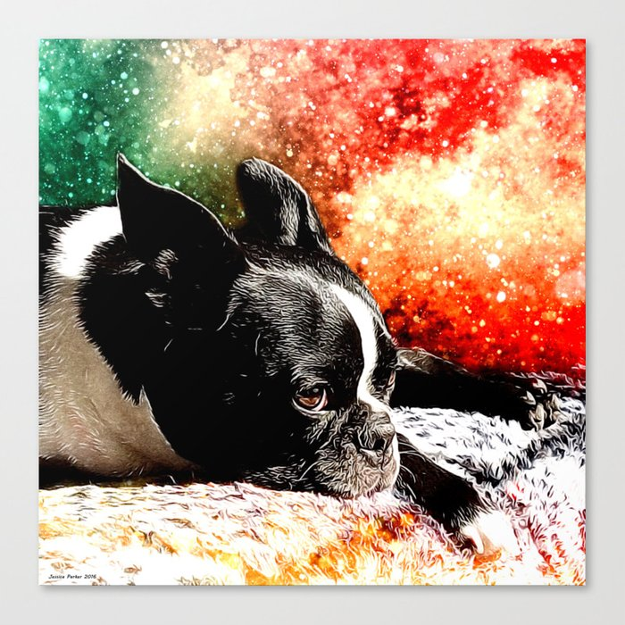 Boston Terrier (Jake) Canvas Print