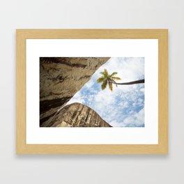 Virgin Gorda Batholithic Boulders and a Sunny Palm Tree Framed Art Print
