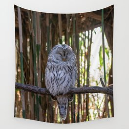 Ural owl resting on a branch Wall Tapestry