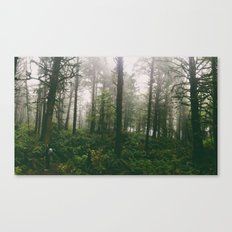 Coastal Forest Canvas Print