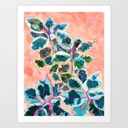 Rubber Tree 2 Art Print