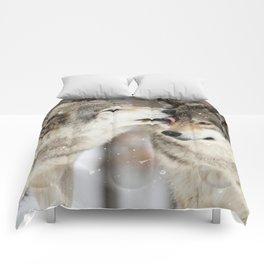 Wolf Kisses Comforters