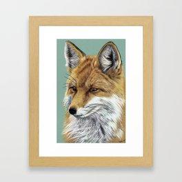 Fox Portrait 01 Framed Art Print