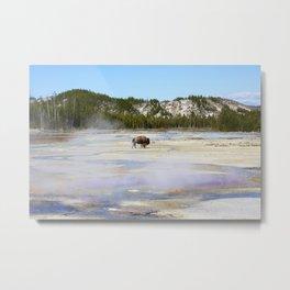 Landscape 52 Metal Print