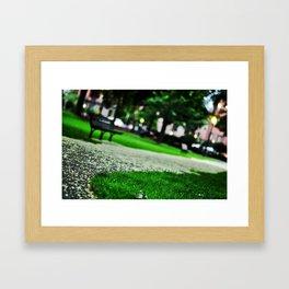 Boston Public Garden at Dusk Framed Art Print