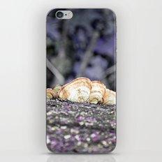 Fungus iPhone & iPod Skin