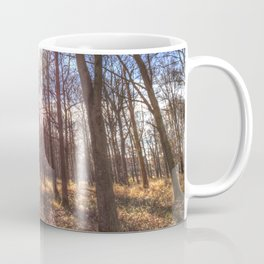 The Sun Ray Forest  Coffee Mug