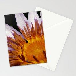 Nymphaea 'Rhonda Kay' V Stationery Cards