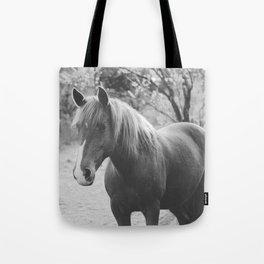 Horse III _ Photography Tote Bag