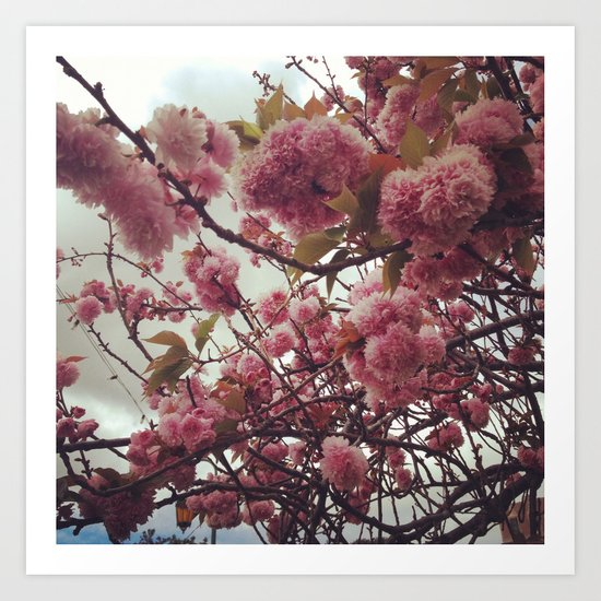 Cloudy pink Art Print
