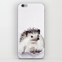 hedgehog iPhone & iPod Skins featuring Hedgehog by Bridget Davidson