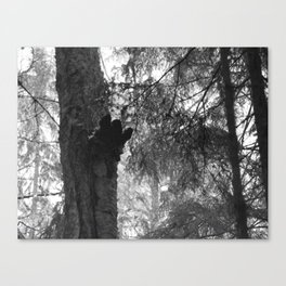 Funny Forest Ghost Canvas Print