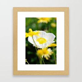 White Beauty Framed Art Print