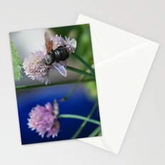 Carpenter Bee 1 Stationery Cards