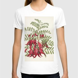 Chrysantheme (chrysanthemum) from La Plante et ses Applications ornementales (1896) illustrated by M T-shirt