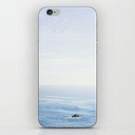 The Sea on a Sunny Day iPhone Skin