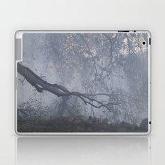 blue fog Laptop & iPad Skin