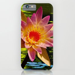 Indian Lotus Flower Waterlily Lake iPhone Case