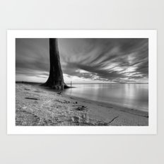 Lone Tree - Black and White Art Print